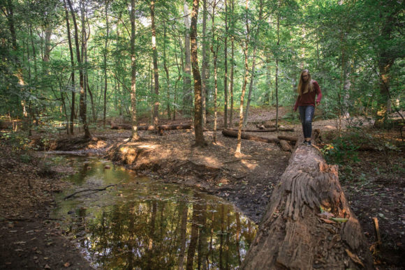 Girl crossing creek on a log in the forest.